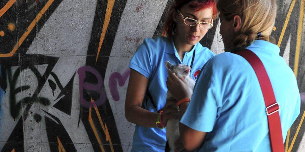 Εθελοντική Δράση Κτηνιάτρων